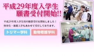 平成29年度入学願書受付開始について