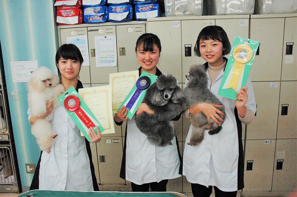 JKCトリマーライセンスC級受賞者