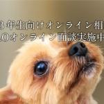 aiken_online